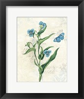 Booked Blue I Framed Print