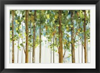 Framed Forest Study I Crop