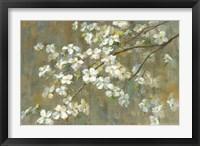 Framed Dogwood in Spring