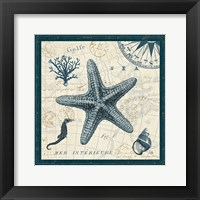 Framed Ocean Life V