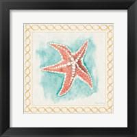 Framed Coastal Mist Starfish Border Turquoise