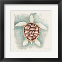 Framed Coastal Mist Sea Turtle
