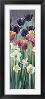 Grape Tulips Panel II Framed Print