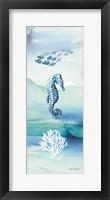 Framed Sea Life VII no Border