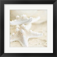 Framed Seashore Stars