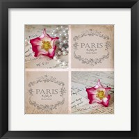 Rose Romance I Framed Print
