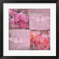 Fresh Rose II Framed Print