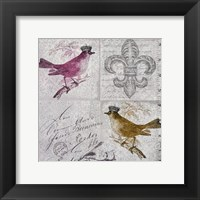 Framed Vintage Birds IV