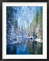 Framed Winter trees along Merced River, Yosemite Valley, Yosemite National Park, California