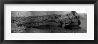 Framed Cape Verde, Mars