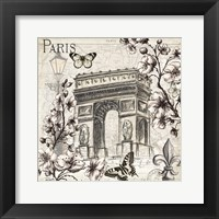 Paris in Bloom II Framed Print