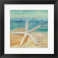Horizon Shells I Framed Print