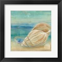 Horizon Shells II Framed Print