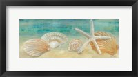 Horizon Shells Panel I Framed Print