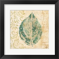 Framed Leaf  Scroll I
