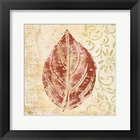 Leaf Scroll II Framed Print