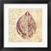 Framed Leaf Scroll III