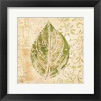 Framed Leaf Scroll IV