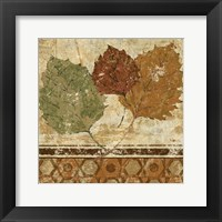 Golden Autumn II Framed Print
