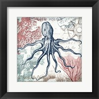 Coastal Sea Life V Framed Print