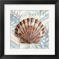 Chevron Shell VI Framed Print