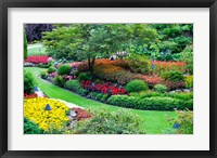 Framed Butchart Gardens in Full Bloom, Victoria, British Columbia, Canada