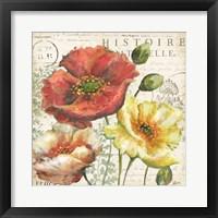 Framed Spice Poppies Histoire Naturelle I