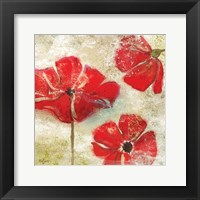 Poppy Passion I Framed Print