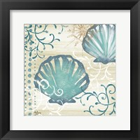 Tranquil Shell I Framed Print