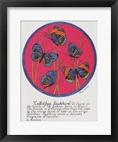 Callithea Saphhira Framed Print