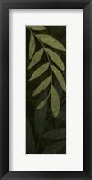 Dark Green Leaves Framed Print