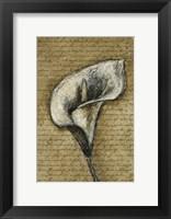 Lily Left Framed Print