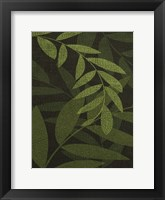Framed Green Leaves 1