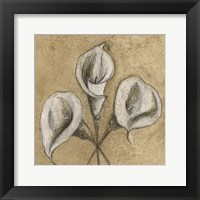 Cala Lily Soft 2 Framed Print