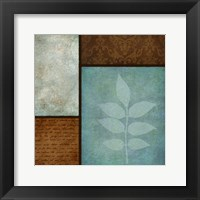 Patterns And Ferns 2 Framed Print