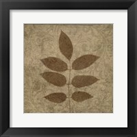 Vintage Leaves 4 Framed Print