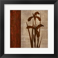 Wine Iris 1 Framed Print