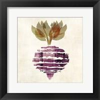 Beet Framed Print
