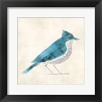 Framed Birds Of A Feather