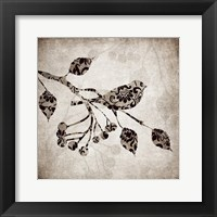Solo Bird 1 Framed Print