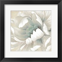Winter Blooms II Framed Print