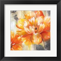 Orange Crush II Framed Print