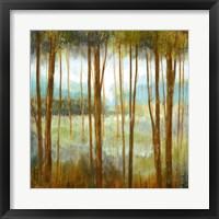Soft Forest I Framed Print
