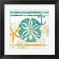 Nautical Brights II Framed Print