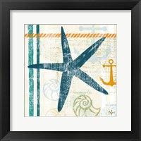 Nautical Brights III Framed Print