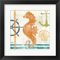 Nautical Brights IV Framed Print