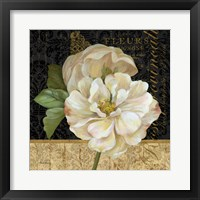 Antique Still Life Rose Framed Print