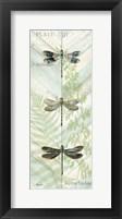 Dragonfly Botanical Panels II Framed Print
