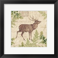 Woodland Trail I (Deer) Framed Print