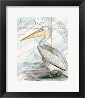Shore Birds II Framed Print